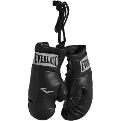 Автоподвес Everlast - Black