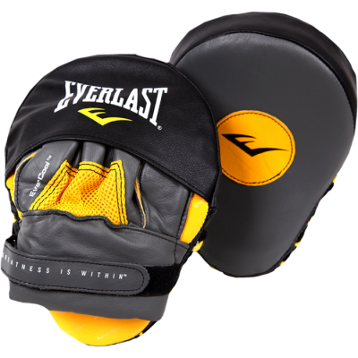 Лапы Everlast Punch