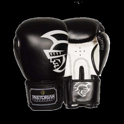 Перчатки боксерские Pretorian - Black